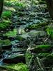 Stream - Kinsua Dam, PA #3442-2