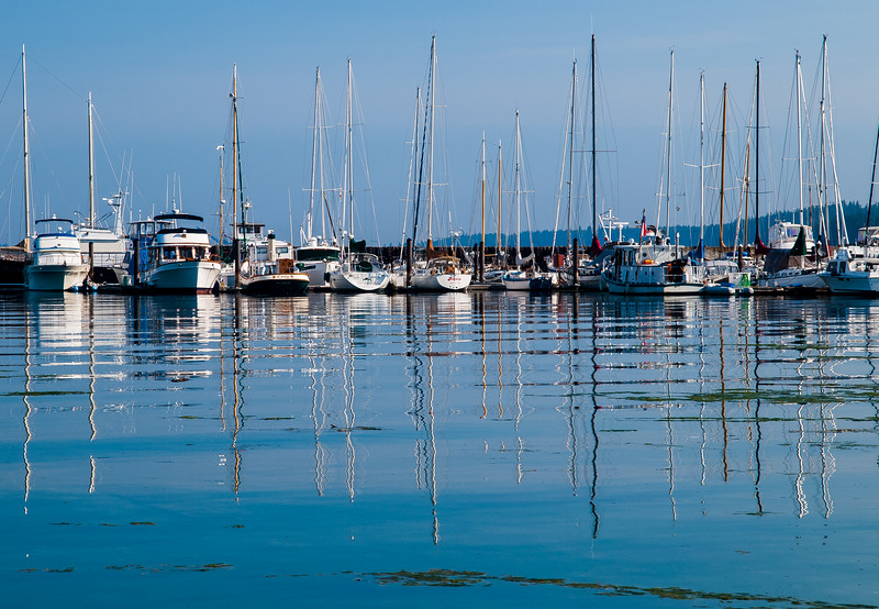 Marina in Port Townsend Bay