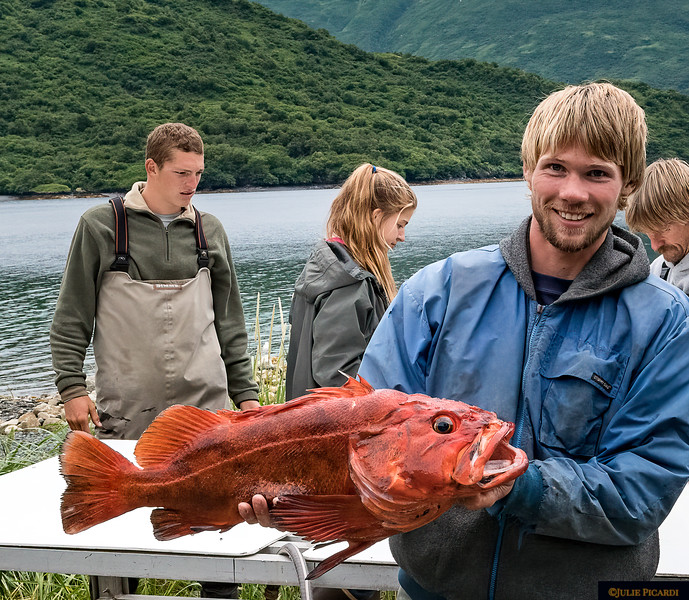 Red Rockfish - Catch of the Day