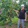 Hula Daddy Coffee Farm