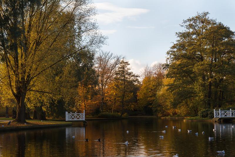 Frederiksberg Have / Schlosspark Frederiksberg