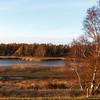 Hejresøen / Reihersee; Kleines Naturreservat