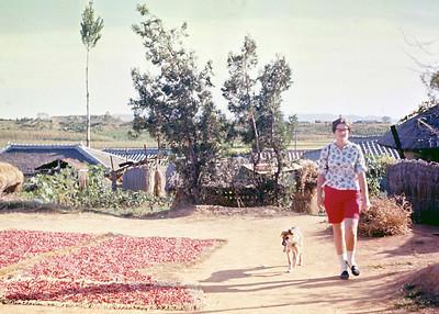 photo tour 1965