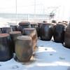 Outdoor fermentation pots--tasty treats inside
