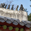 More gargoyles at Jongmyo, the Confucian shrine for kings and queens of the Joseon Dynasty.