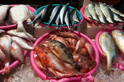 Raw fish at Haeundae seafood market