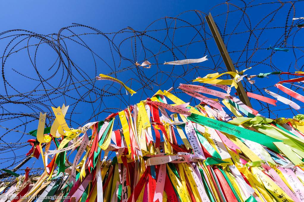 Barbed wire fence and unification prayer flags