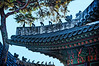 2013-11-10_Changdeuk-gung_Roof-Guardians_6509_HDR-