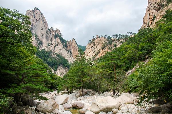 Rocky peaks and pine tree
