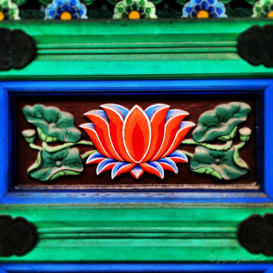 Lotus Flower at Bongwonsa