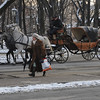 horse carriage in Krakow, Poland,