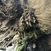 In the Batu Cave
