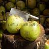 Coconut stand Batu caves Kl Nov 2009