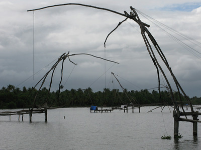 Chinese net fishing is very common in Cochin.  The fishermen actually sleep close to the nets at night.