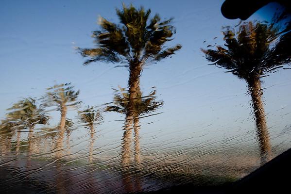 Palmy voda Kuvajt