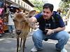 The deer at Nara-koen