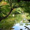 Kyoto near Kinkakuji (Golden Pavilion) Temple