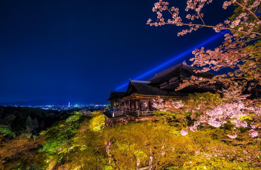 Cherry Blossom Night Lighting At Kiyomizudera Temple Travel Caffeine