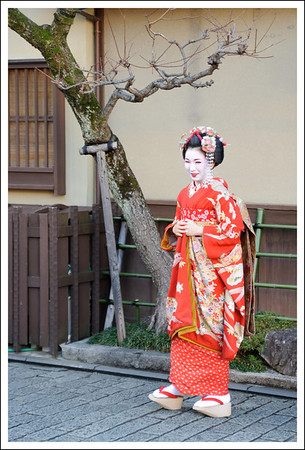 Maiko for the tourists
