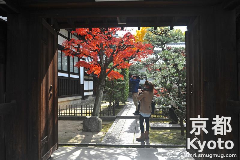 A Doorway to a Small Garden