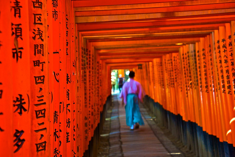 Torii Gates- there are 10,000
