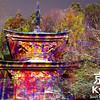 Ancient Meets Modern at the Arashiyama Hanatouro