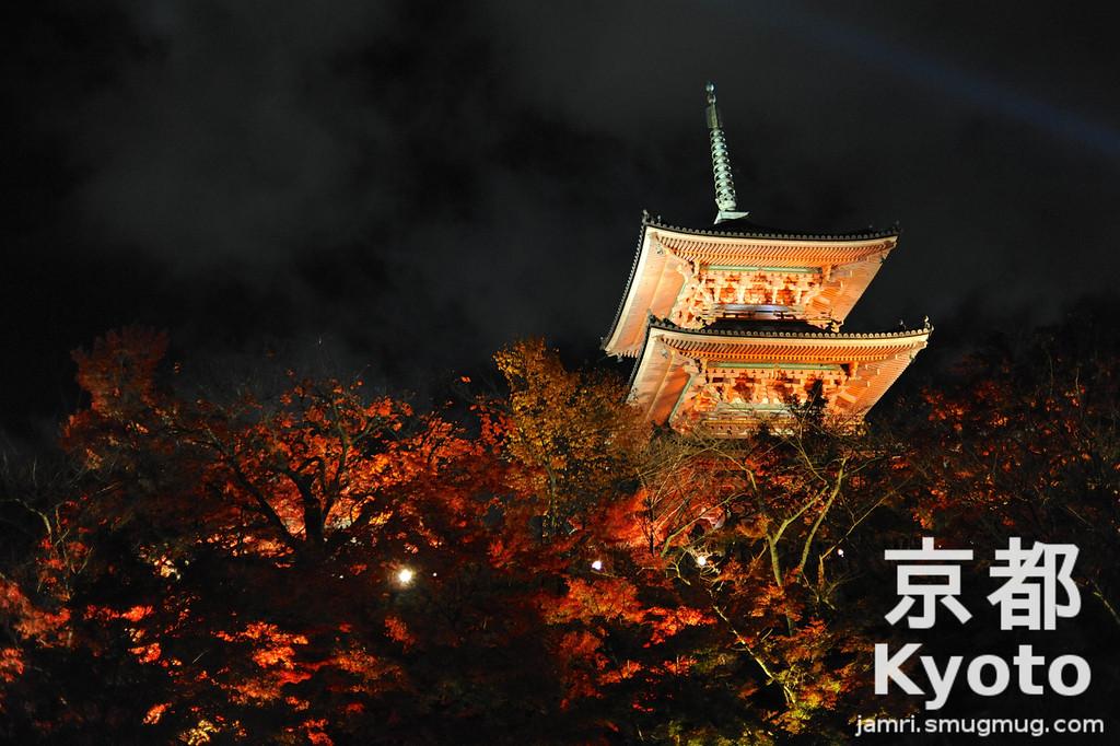 Autumn Light Up