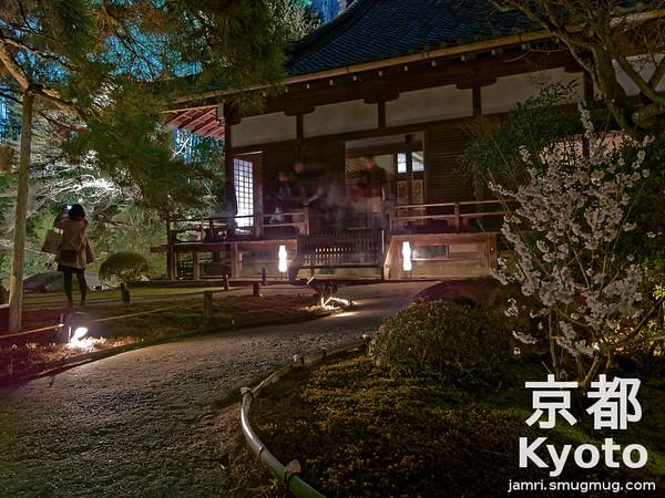 In the Garden of Sho-ren-in