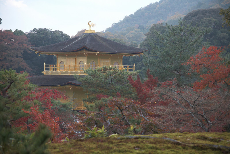 The Golden Pavilion.