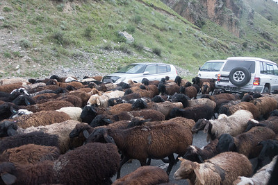 Murghab to Osh: Moving to Summer  Pasture via road network
