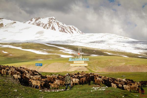 Ala-Bel Mountain pass, Kyrgyzstan 5