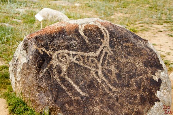close-up ibex at Cholpon-Ata Petroglyphs Kyrgyzstan
