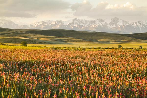 Issyk Kul Karakol sunrise, Kyrgyzstan 8