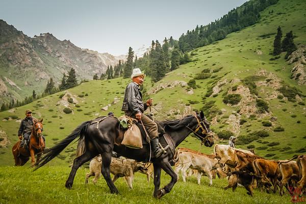 herder Altyn Arashan Kyrgyzstan