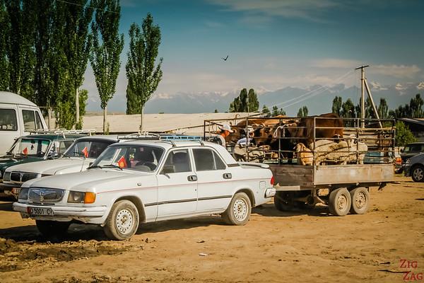 Karakol animal market, Kyrgyzstan 1