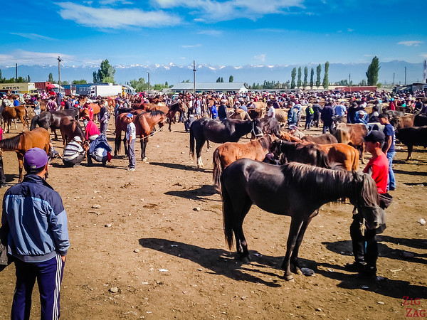 Karakol animal market, Kyrgyzstan 5
