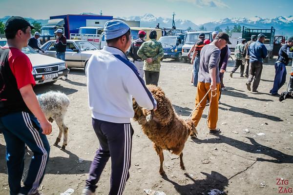 Karakol animal market, Kyrgyzstan 7