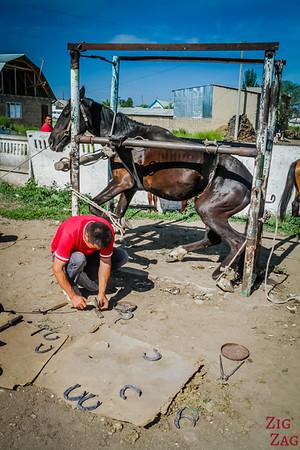 Karakol animal market, Kyrgyzstan 6
