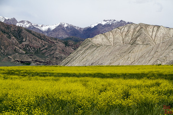 Best of photos Kyrgyzstan - landscape 16