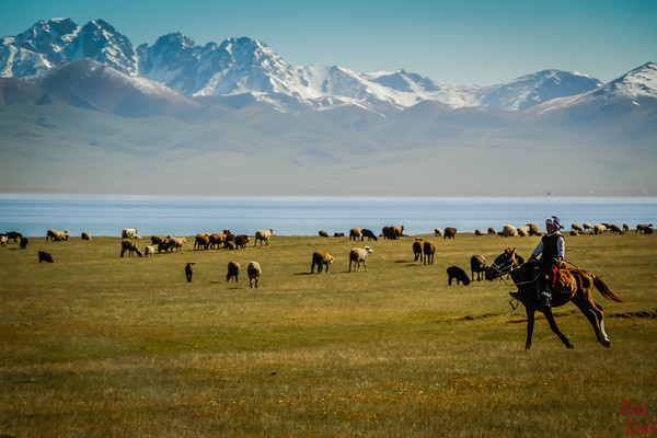 nomad herders at  Song Kul lake, Kyrgyzstan 5
