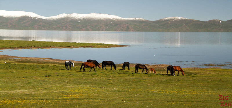 leaving  Song Kul lake, Kyrgyzstan 2