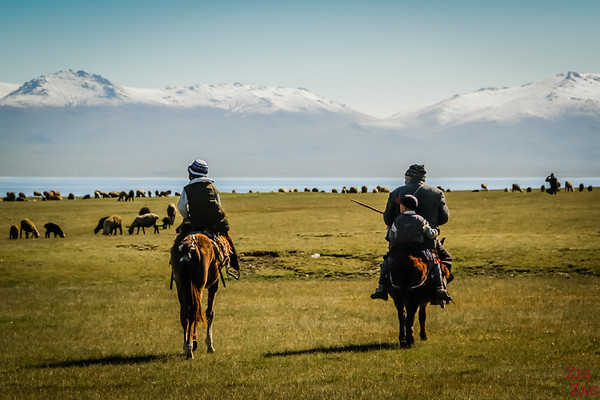 Nomad Kyrgyz and their herds