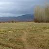 Fields Near Tamga