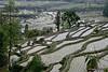 Trek_003_Kathmandu-Syabrubesi