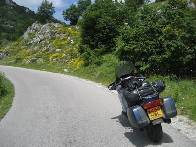 Cetinje road but now up very high, lovely alpine flowers. I remember the complete feeling of peace up here.