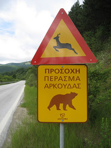 A few hundred metres up the road, a sign warning you about the deer and bears