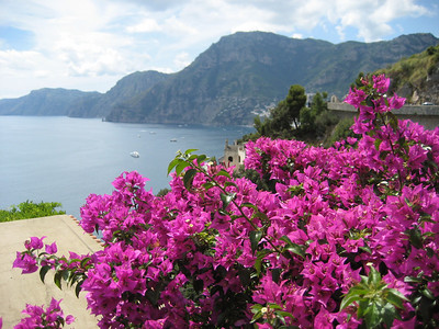 Bouganvillia is everywhere on the Med. It makes any picture