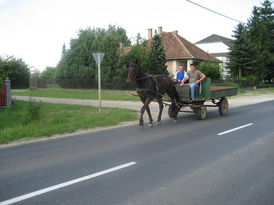 Horse and Cart in eastern Hungary