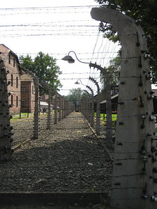 Miles of electric barbed wire fence at Aushwitz