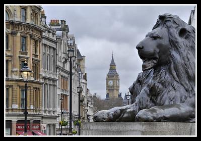 _DSC1340 Trafalgar Lion 2